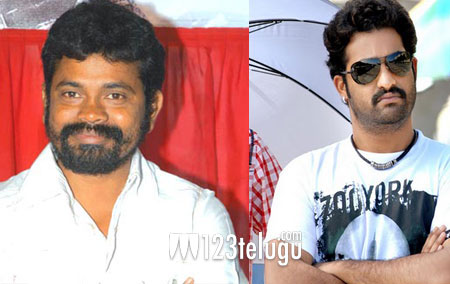 Sukumar-and-NTR