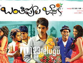 Banthi Poola Janaki Review