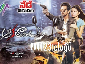 Aakatayi movie review